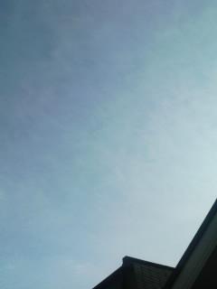 今日も晴れかよっ。