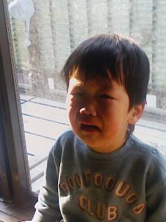 なんで泣くの