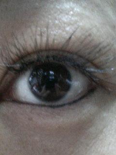 これ私の目